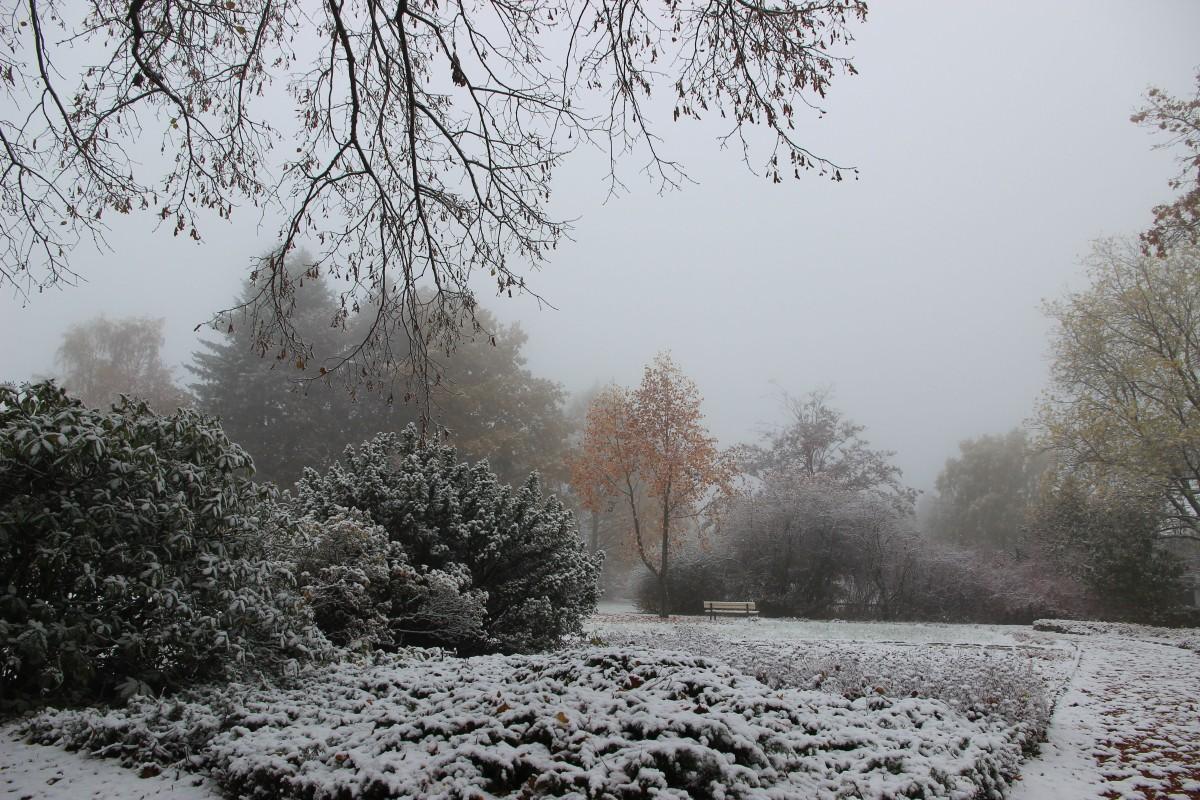 Der erste Schnee istgefallen