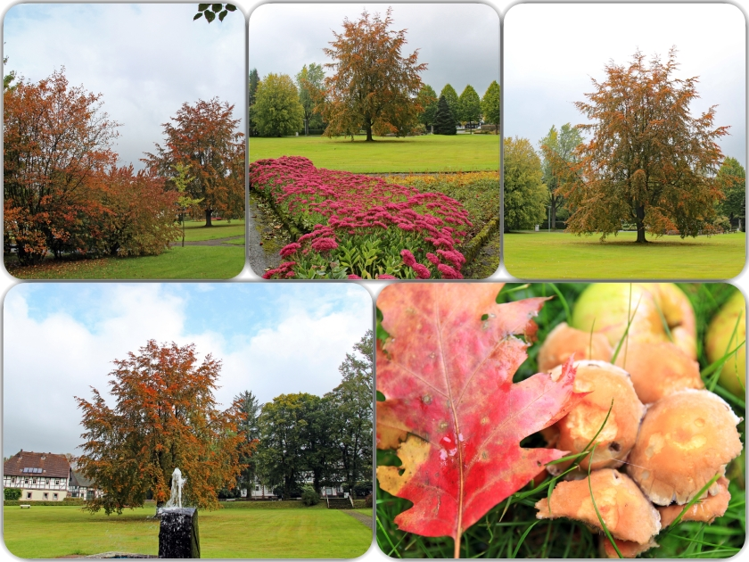 Collage_Herbst_2