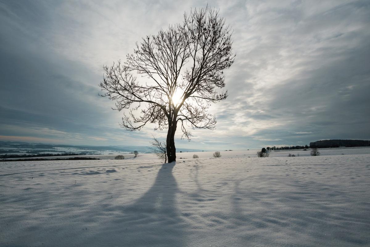 Grau, nass und zeitweisewinterlich